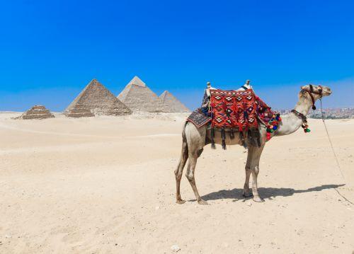 Египет есен - кацане в Хургада и прибиране от Кайро с полет от София